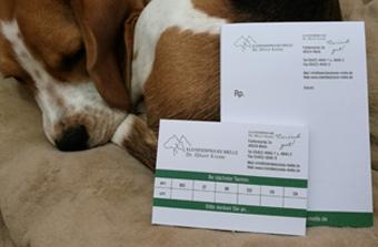 Blöcke-TierarztKrone-1