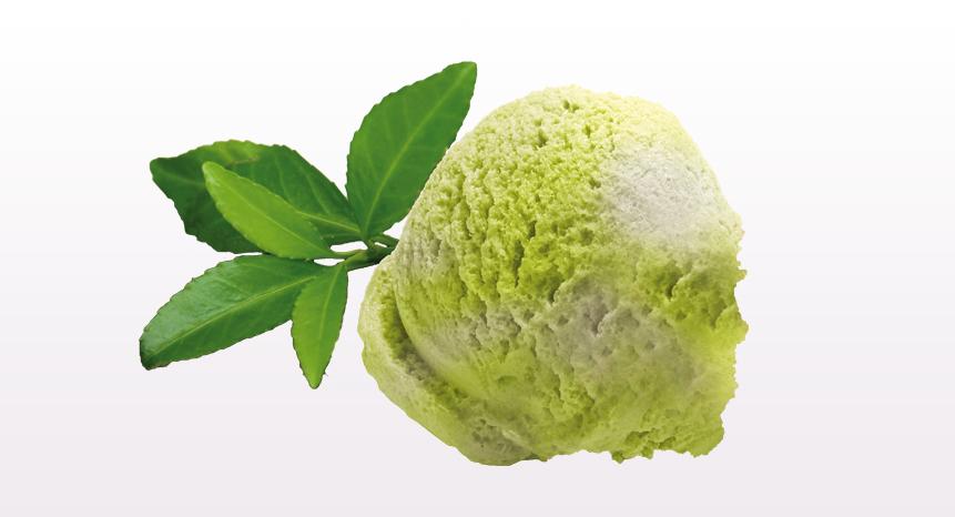 Eiskugeln-GourmetEis-1-c