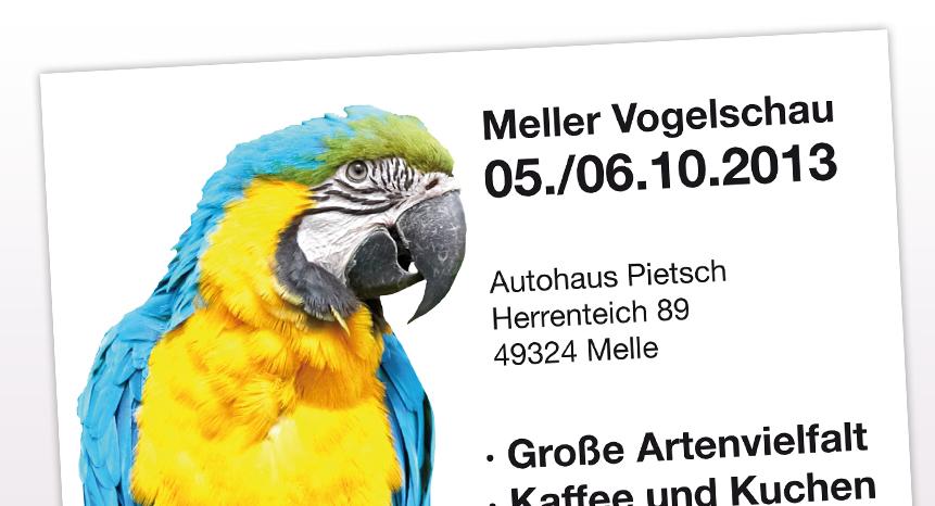 Flyer-Vogelschau-1-b