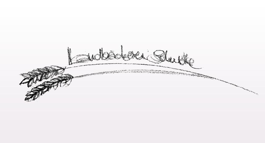 Logo-Schulte-2-b