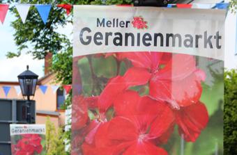 Meshbanner-StadtMelle-1